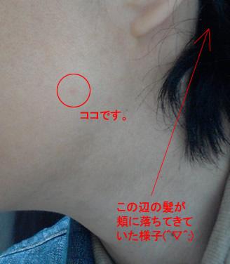 20150401_yoko